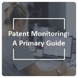 Patent Monitoring A Primary Guide